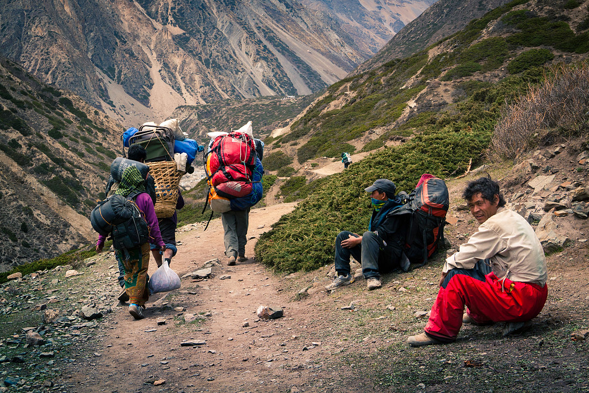 "Other than caddies, bell hops and porters such as these sherpas on the slopes of Annapurna in the Himalayas, very few people make their living by carrying things on their back. ""Nepali porters"" by Dmitry A. Mottl - Own work. Licensed under CC BY-SA 3.0 via Wikimedia Commons - http://commons.wikimedia.org/wiki/File:Nepali_porters.jpg#mediaviewer/File:Nepali_porters.jpg"